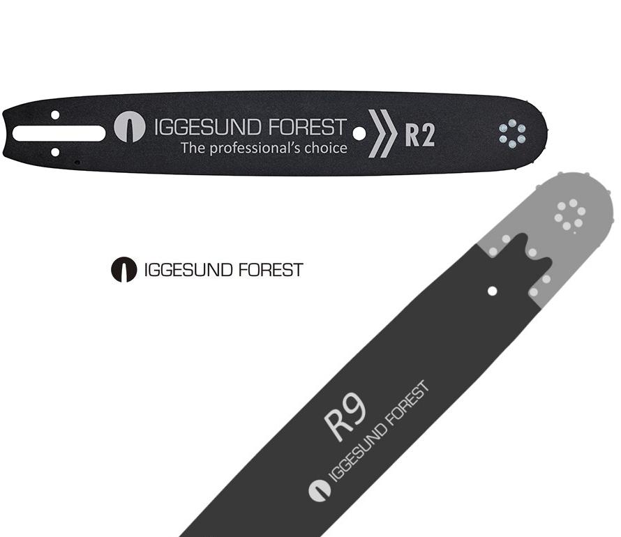 IGGESUND FOREST